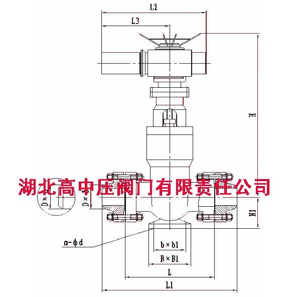 电动闸阀(结构原理图)